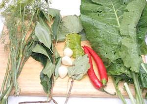Фото - Зелень для маринаду